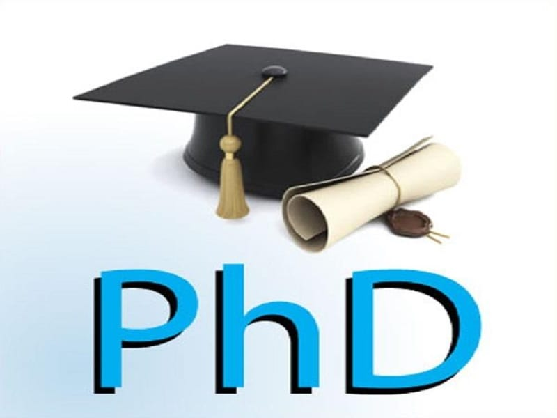 Everything You Need to Know About a PhD