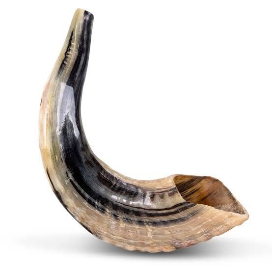 Sale of Shofar Horn and Kippah
